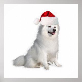 Ditzy Dogs~Original Poster~Eskimo Spitz