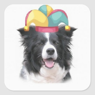 Ditzy Dogs~Original Sticker~Border Collie Square Sticker