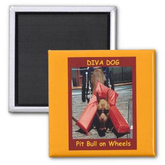 DIVA DOG Chillin' Refrigerator Magnet