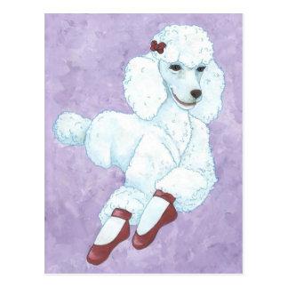 Diva Dog Postcard