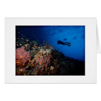 Diver on Reef Greeting Card