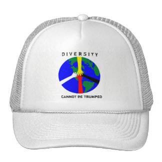 Diversity Cannot Be Trumped -  Hat