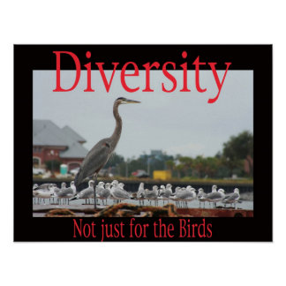 Diversity, not just for the birds poster