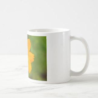 Diversos Flor amarela Classic White Coffee Mug