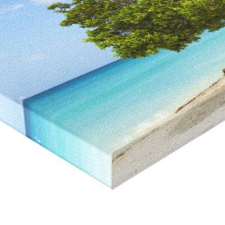 Divi Divi Tree on the Caribbean Island of Aruba Canvas Print
