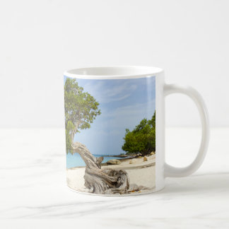 Divi Divi Tree on the Caribbean Island of Aruba Coffee Mug