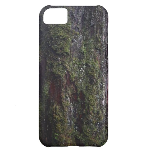 Divine Tree A.D. 1007 iPhone 5 Case