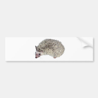 DIY Hedgehog left Bumper Sticker