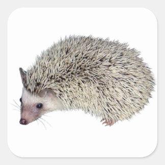 DIY Hedgehog left Square Sticker