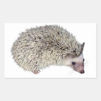 DIY Hedgehog right
