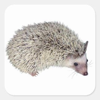 DIY Hedgehog right Square Sticker