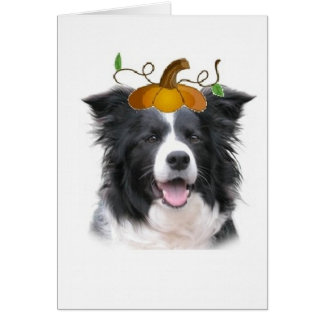Dizzy Dogz~Border Collie Note Card~Halloween Card