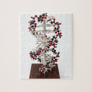 DNA Model Jigsaw Puzzle