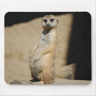 Do I look fat? Mouse Pad