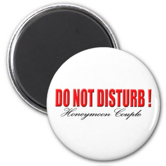 Do Not Disturb Honeymoon Couple Magnet