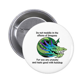 Do Not Meddle in the Affairs of Dragons Pins