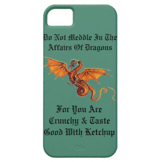 Do Not Meddle In The Affairs Of Dragons iPhone 5 Covers