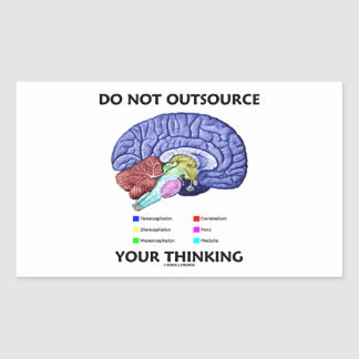 Do Not Outsource Your Thinking (Brain Anatomy) Sticker