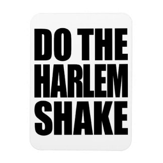Do The Harlem Shake Magnet