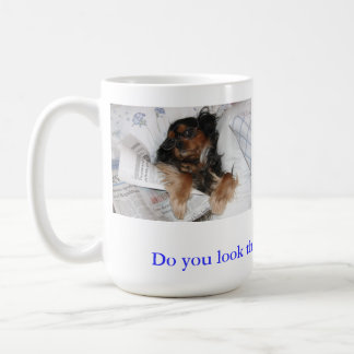 Do You Look This Good Cavalier King Charles Mug