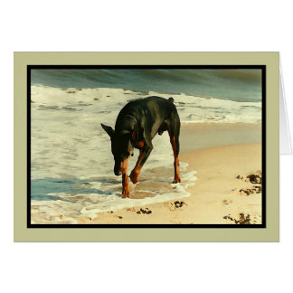 Doberman at the Beach Painting Image Card