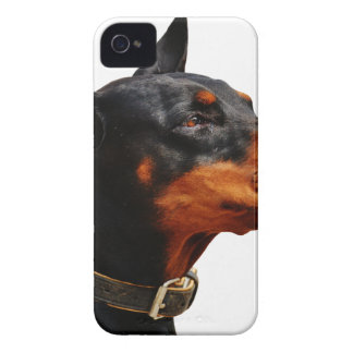 Doberman Dog Pet Animal iPhone 4 Case-Mate Case