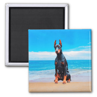 Doberman Dog Sitting On Beach Magnet