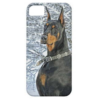 Doberman Frosty Day iPhone 5 Covers