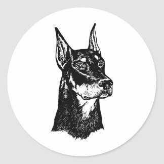 DOBERMAN HEAD CLASSIC ROUND STICKER