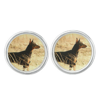 Doberman in Dry Reeds Painting Image Cuff Links