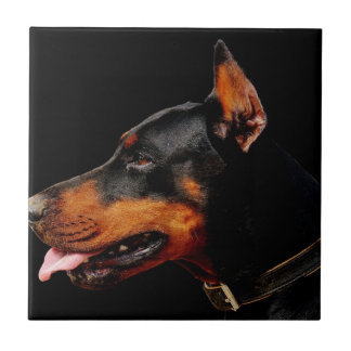 Doberman Pet Dog Tile