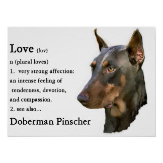 Doberman Pinscher Art Print