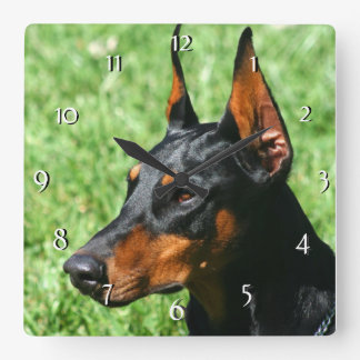 Doberman Pinscher dog  clock