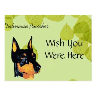 Doberman Pinscher ~ Green Leaves Design Postcard