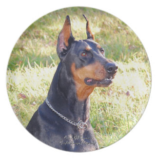 Doberman Pinscher Headshot Party Plates