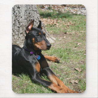 Doberman Pinscher Mouse Pad