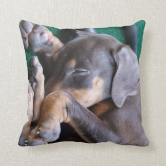 Doberman Pinscher Puppy Pillow