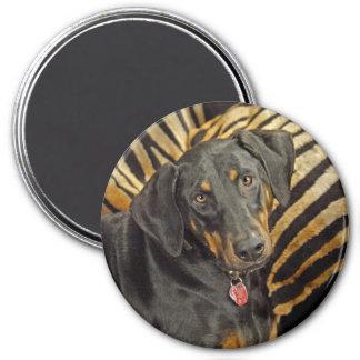 Doberman Pound Puppy Magnet