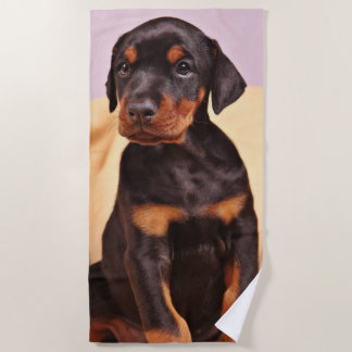 Doberman Puppy Beach Towel