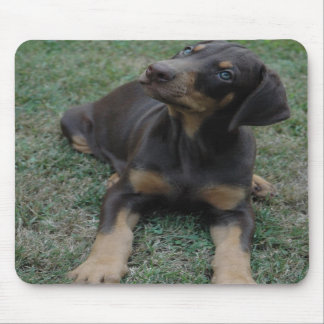 Doberman Puppy mousepad