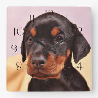 Doberman Puppy Square Wall Clock
