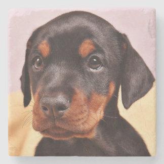 Doberman Puppy Stone Coaster