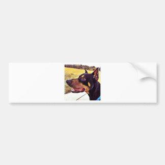 Doberman Swirl Paint 2 Bumper Sticker