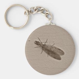 dobsonfly keychain