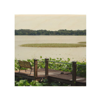 Dock on Lake Hollingsworth Wood Prints