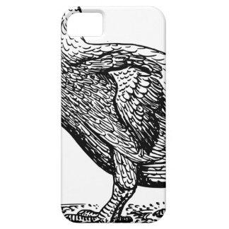 Dodo Bird iPhone 5 Case
