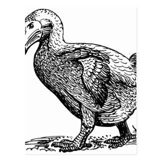 Dodo Bird Postcard