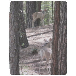 Doe and Her Fawn iPad Cover