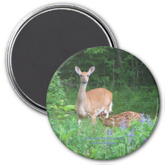 Doe and Nursing Fawn in the Gardens Magnet
