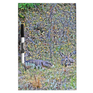 Doe deer and fawns dry erase board